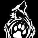 White-Coyote