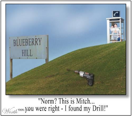Blueberry_hill.jpg