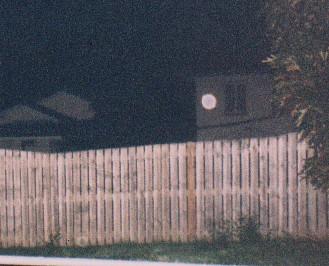 Back yard orb