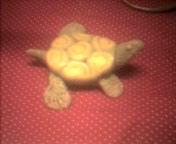 My clay