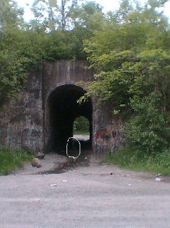 The screaming tunnel
