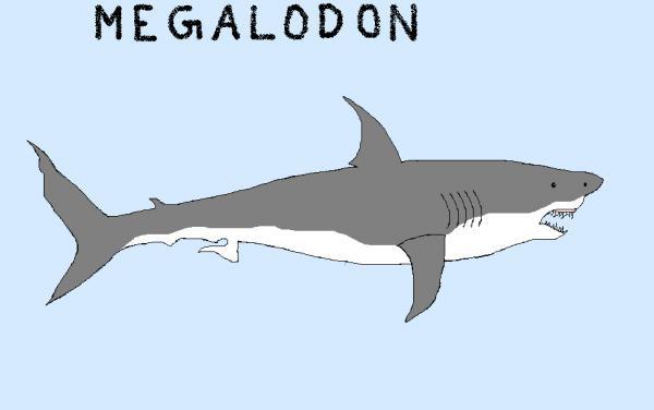 Great White Shark MsPaint