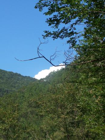 Marshmallow cloud!