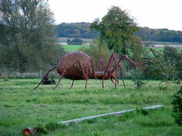 Giant spider in a field