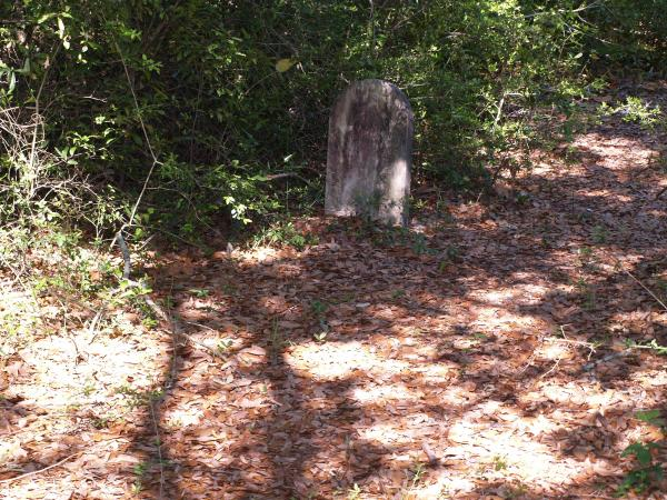 Cemetary Picture