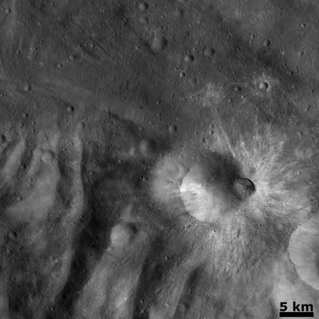 Vesta - Recent impact on the rim of Tuccia crater