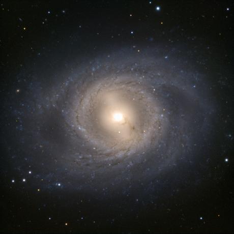 The VLT goes lion hunting - Messier 95