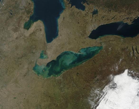Sediment in Lake Erie