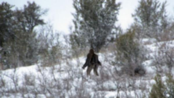 Utah bigfoot