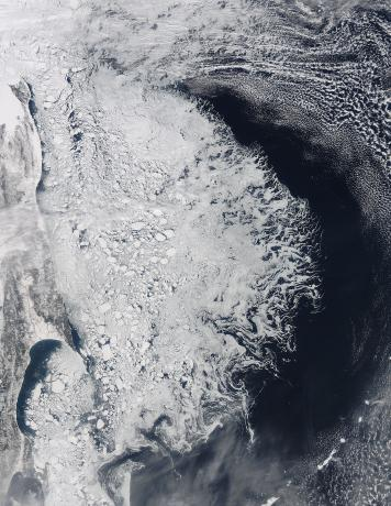 Ice in the Sea of Okhotsk