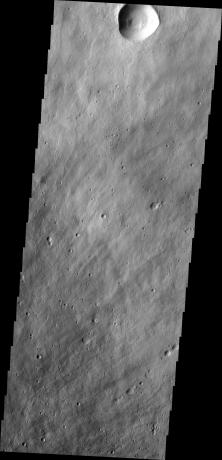 Mars Odyssey - Elysium Mons