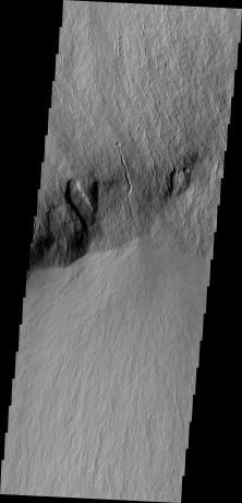Mars Odyssey - Olympus Rupes