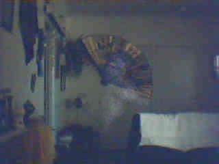 Motion Activated Webcam captures spirit in living room.