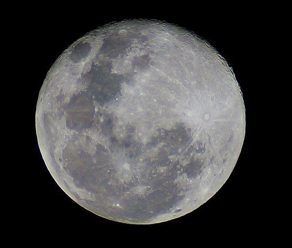 Luna 20130624 Brisbane Aus