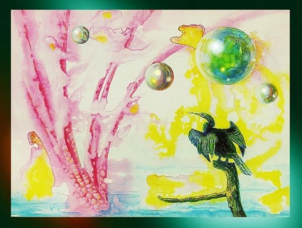 Cormorant  Dreaming
