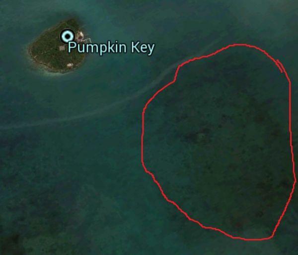 Lady ocean Of google earth