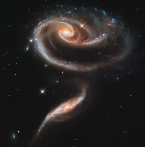 Hubble - A rose made of galaxies