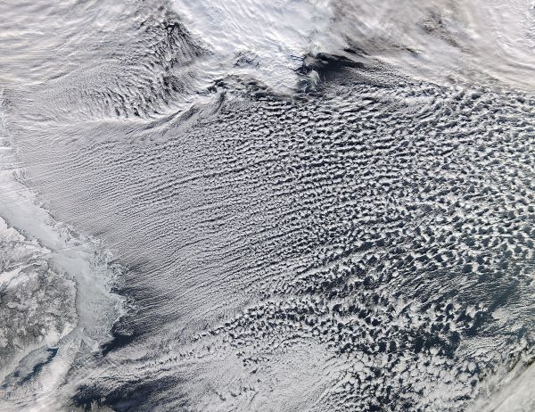 Cloud Streets in the Labrador Sea