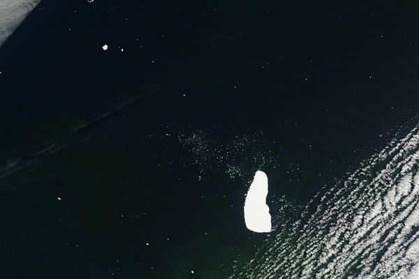 Iceberg C16 in the South Atlantic Ocean (morning overpass)