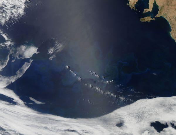 Phytoplankton bloom in the Great Australian Bight
