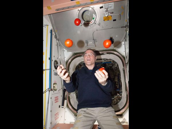 Expedition 34 Commander Kevin Ford