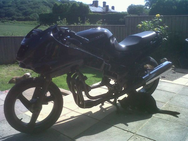 New bike build