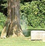 Ohio Cemetery (1)