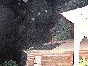 Man on house?