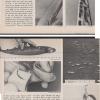August1978NavalProceedingsArticleCutout