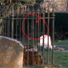 Zoomed in Version of Chaldon Ghost Face