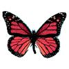 mariposa26