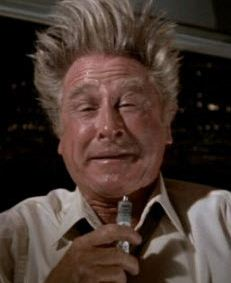 airplane_lloyd_bridges_high.JPG