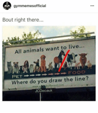 thumb_gymmemesofficial-bout-right-there-all-animals-want-to-live-food-16711128.png