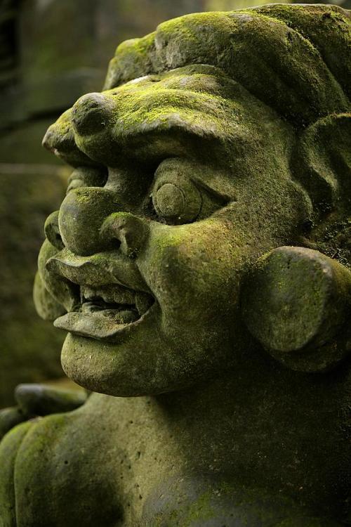 carving-of-an-ape-like-face-in-monkey-david-santiago-garcia.thumb.jpg.92576549d6c50c9523245c8faf66cf55.jpg
