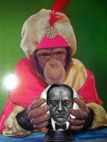 monkey spacey.jpg