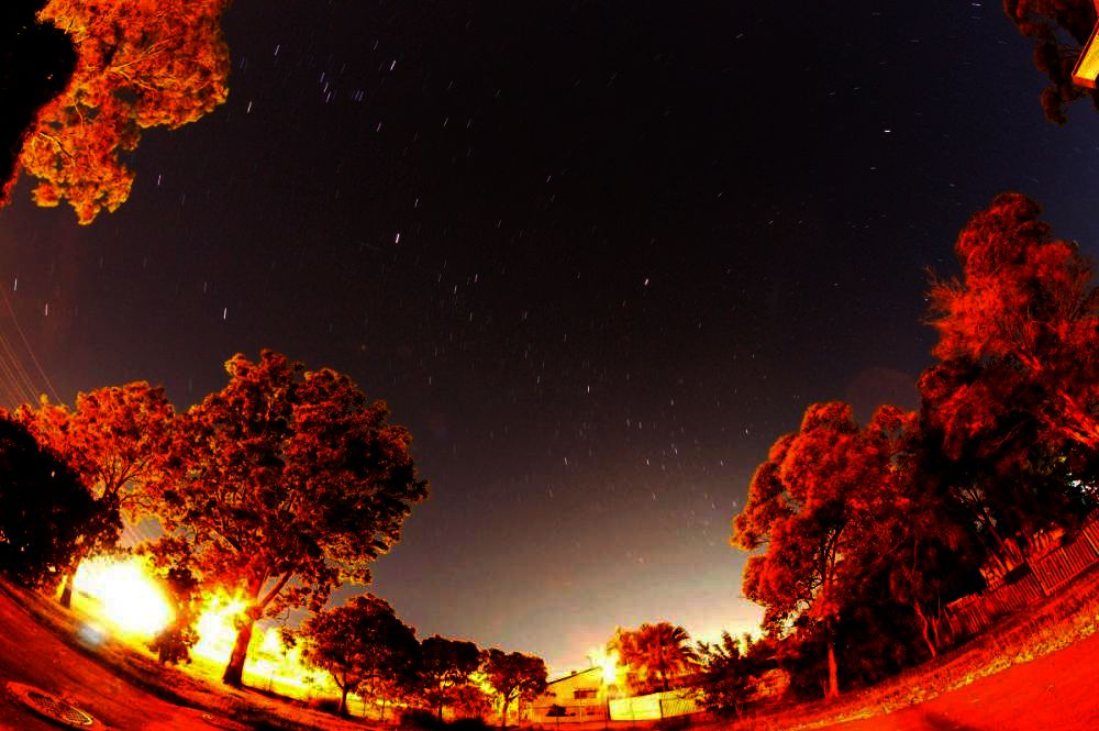 nightsky.jpg.daf8eab82ed74cee9ee6508282777228.jpg