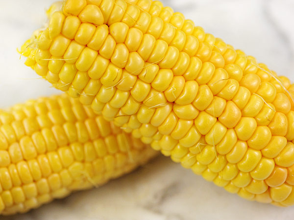 Corn-True-Gold-CN133-LSS-000_2485.jpg