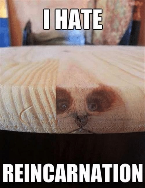 hate-reincarnation.jpg
