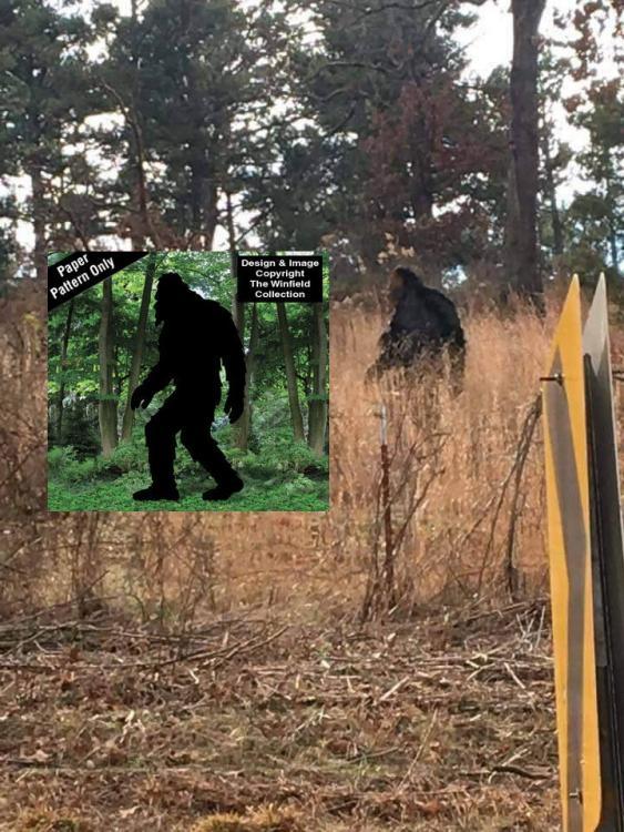Fake sasquatch.jpg