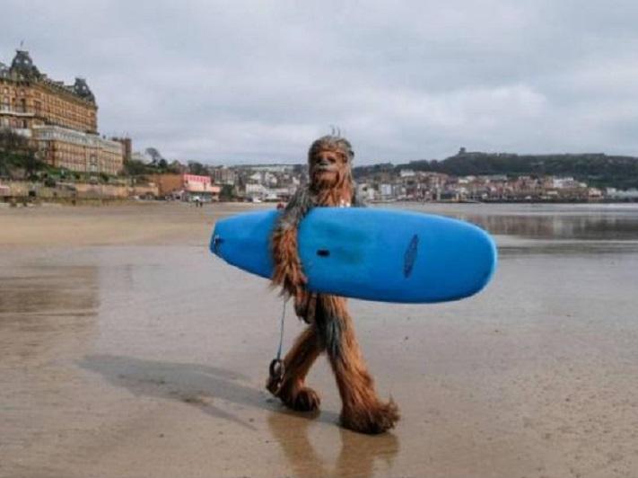 bigfootsurf.jpg