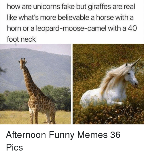 how-are-unicorns-fake-but-giraffes-are-real-like-whats-35559412.png