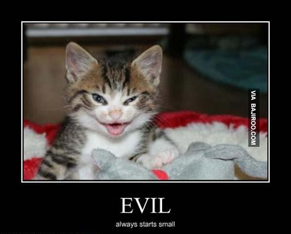 Evil-always-starts-small.jpg.1fb1162184361651551597467c89f785.jpg