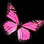 butterflygirl1