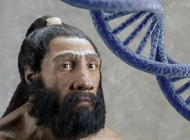 1026183596_neanderthaldna.jpg.cb76bcfdb0f184066f6bdbd1c243693f.jpg
