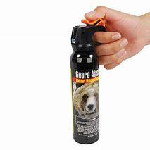 Bear Spray.jpg