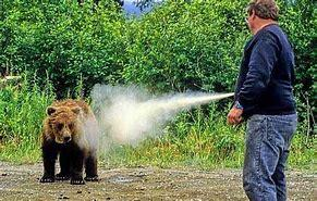 Bear Spray 2.jpg