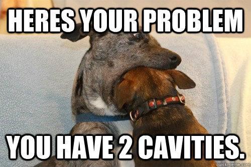 dog-dental-meme.jpg