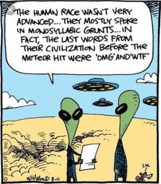 alien12.jpg