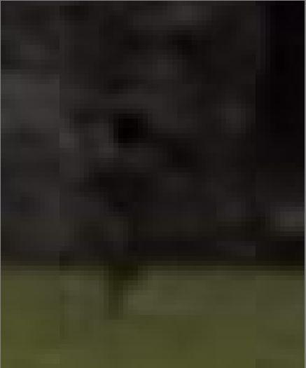 000_enlarge.jpg.42c86bc33d34b15e0c020178d62108db.jpg