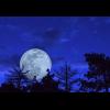 Moonchild*